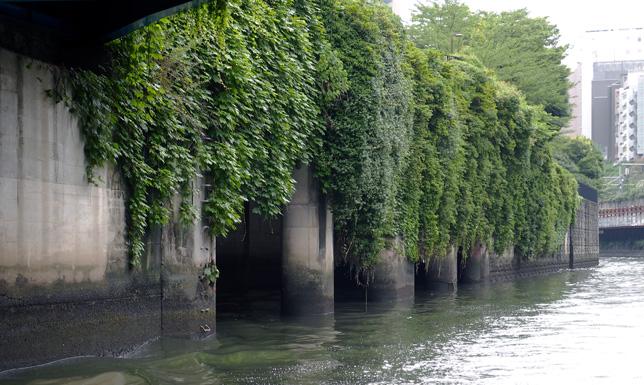 お茶の水分水路の出口