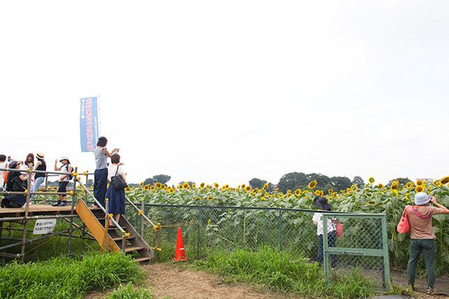 2017-08-24-himawari-4-1