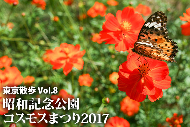 2017-10-12-cosmos-top