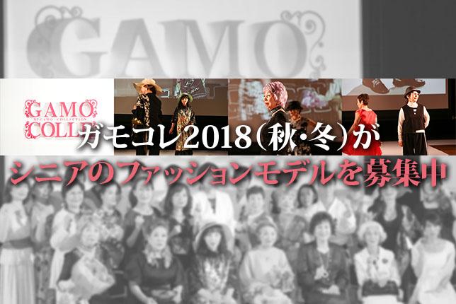 2018-07-19-gamo-top